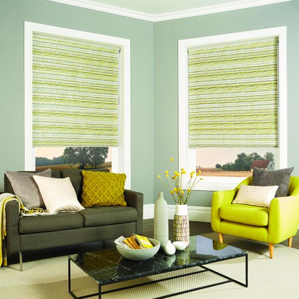 Roller/Sunscreen Blinds
